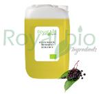Organic Tamanu Vegetable Oil
