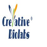 De Novo single domain antibody Sequencing Service