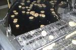 Machine Automatique cuisson 2 faces sur plaque et retourneur