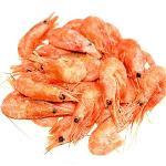 Frozen Giant Red Shrimps