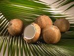 Kokoscreme / Bio Kokoscreme