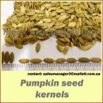 Pumokin seeds kernels
