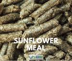 Sunflower Meal