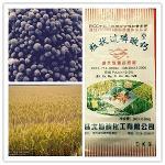 """""""Hanjiang card"""" superphosphate granulaire"""