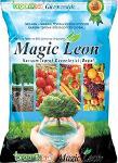 Magic Leon Leonardite