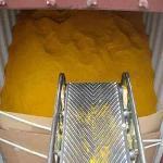 Prix compétitif Non-OGM Alimentation animale 60% Poudre de g