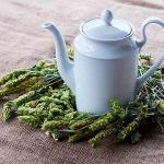 Organic Greek Mountain Tea - Sideritis Scardica