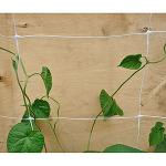 Climbing Plant Support Net