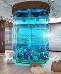 Acrylic Aquarium Round, Cylinder Aquariums