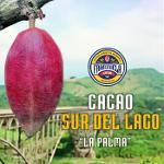 Cacao Sur del Lago