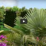 Paysagiste Clermont-ferrand : Amenagement Jardin