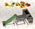 Dates Cleaning and Polishing Line