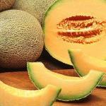 Fruits frais - import export