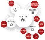 Relocation / Mobilité International