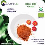 Organic Acerola Freeze-Dried Powder 22% Vitamin C