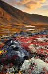 Murmansk Kola: Polar Kaleidoscope