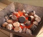 charbon de typha