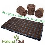 Plug-in tray for your cuttings