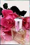 Parfum Flowerlove concentration 30% aux fleurs de Grasse