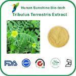 Tribulus Terrestris Extrait