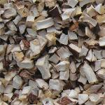 shiitake mushroom cube