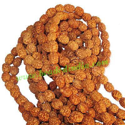 Rudraksha Beads String (mala) 3 Mukhi (three face), size: 7m