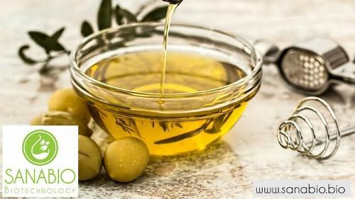 Olivenöl, BIO FOOD