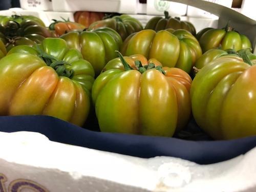 Pomodoro diverse varietà disponibili