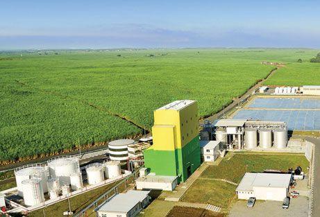 Bioethanol Distillery