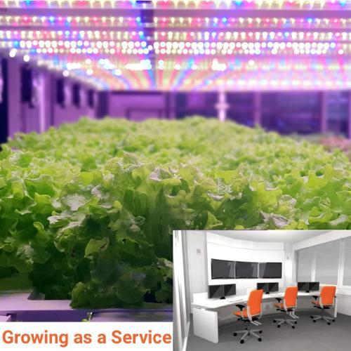 GaaS Wageningen - Growing as a Service