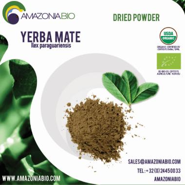 Organic Yerba Mate Dried Leaves Powder