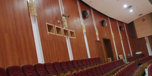 Panneaux acoustiques en bois