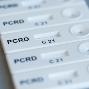 PCRD Nucleic acid lateral flow immunoassay