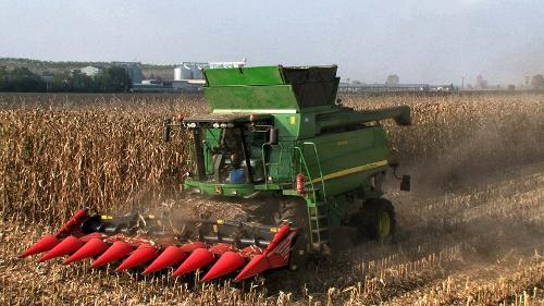 Cabezal para maíz
