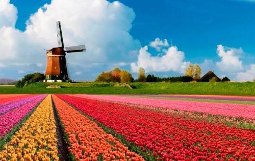 Перевозка личных вещей в Голландию. Переезд в Голландию