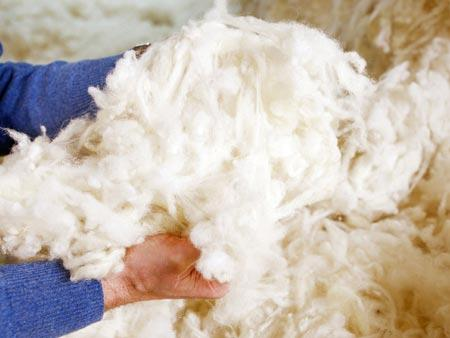 SCOURED AND WASHABLE WOOL