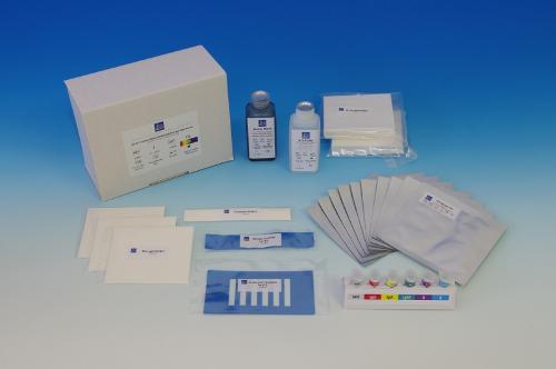 Electrophoresis agarose gel kits