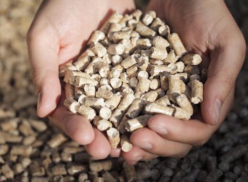 Древесные пеллеты и экологически чистые дрова