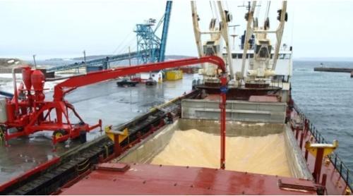 Отправка сыпучих грузов на экспорт