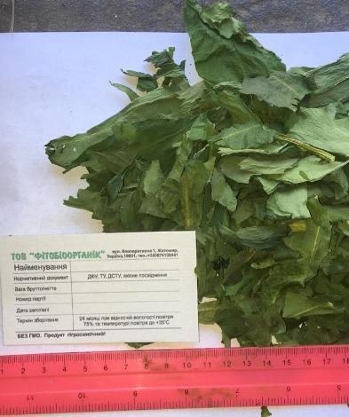 suszony liść Allium ursinum.Dried ramson-Dried wild garlic