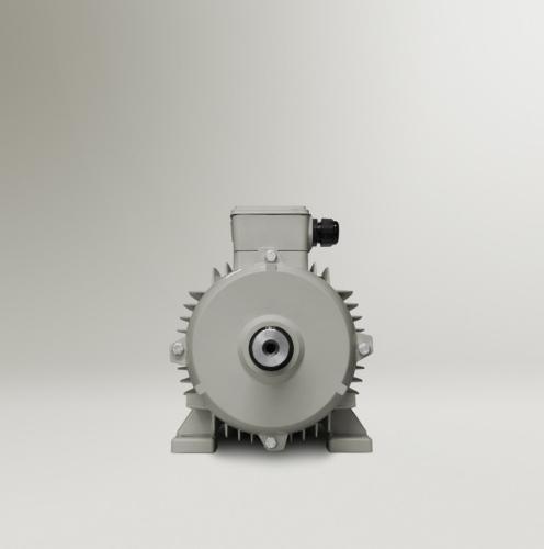IE4 Super Premium Standard Motor - MPM 4,4