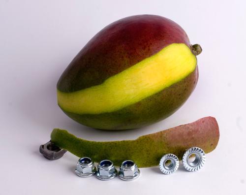 Nuts Art
