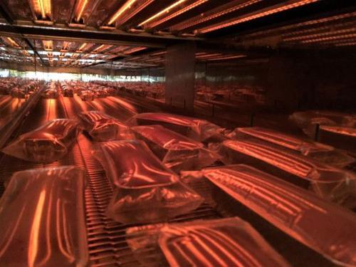 Tunnels de pasteurisation IR sous emballage