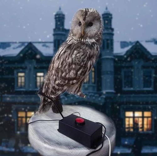 Owl intercom (two way communication)