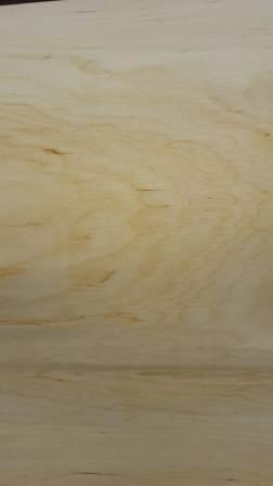 Rotary cut birch veneer