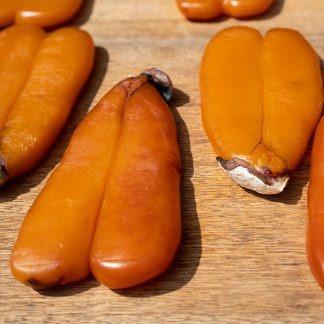Poutargue - Bottarga de mulet