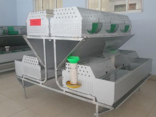 1.8m commercial rabbit cages