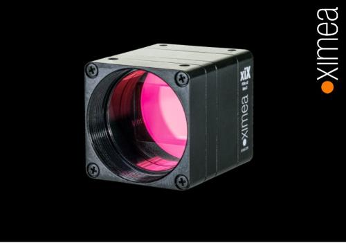 Compact cameras with PCIe interface - xiX