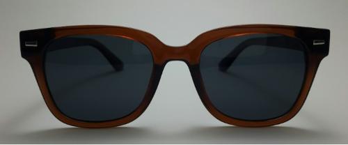 Sunglasses Model No.808