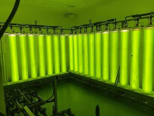 Rohre für Bioreaktoren